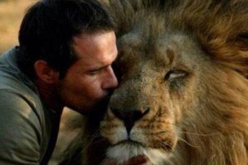 homem beijando leao